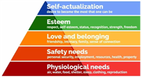Pandemic bring hierarchy of needs into focus